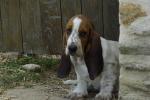 profil picture Brigitte N