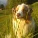 profil picture Natacha S